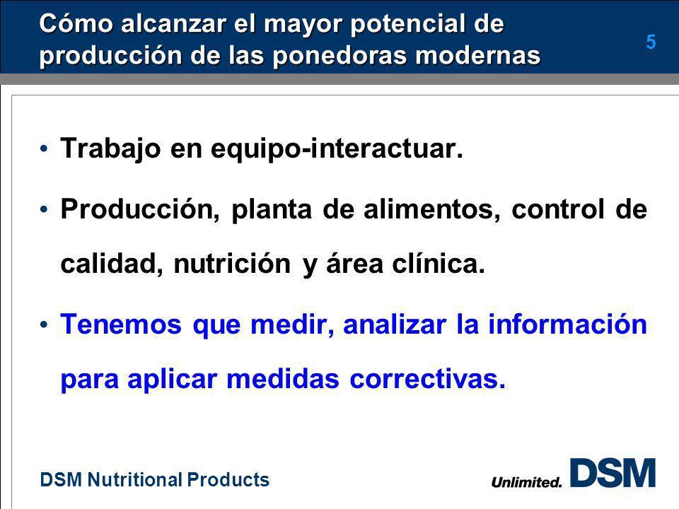 DSM Nutritional Products 4 Quiénes son los responsables de realizar estas actividades Producción Planta de alimentos Control de calidad Nutrición Clín