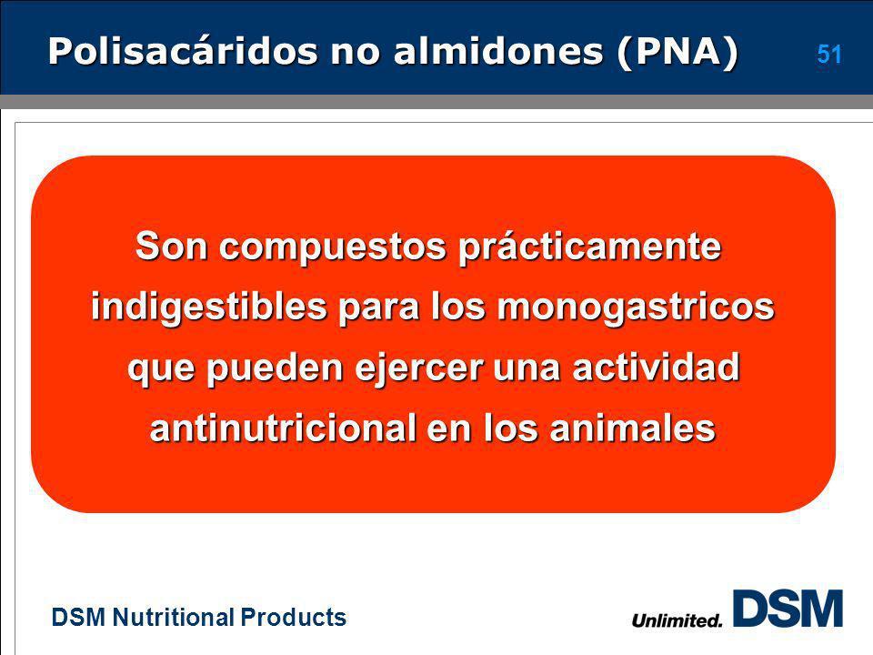 DSM Nutritional Products 50 Componentes de los ingredientes Los ingredientes están compuestos por proteína, almidones, minerales, grasa y fibra. En mo