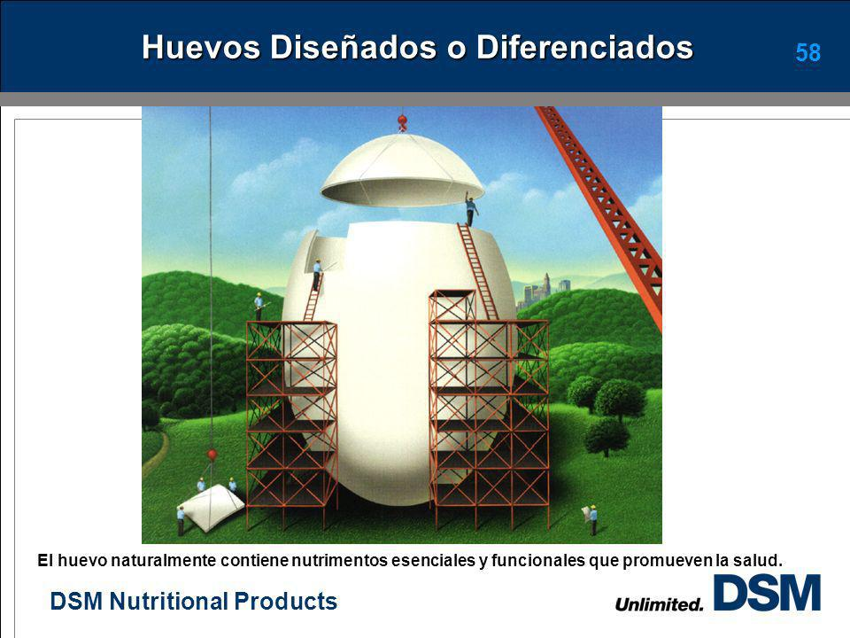 DSM Nutritional Products 57 Conclusiones La interacción entre las diferentes areas es importante para lograr los mejores resultados. La formulación en
