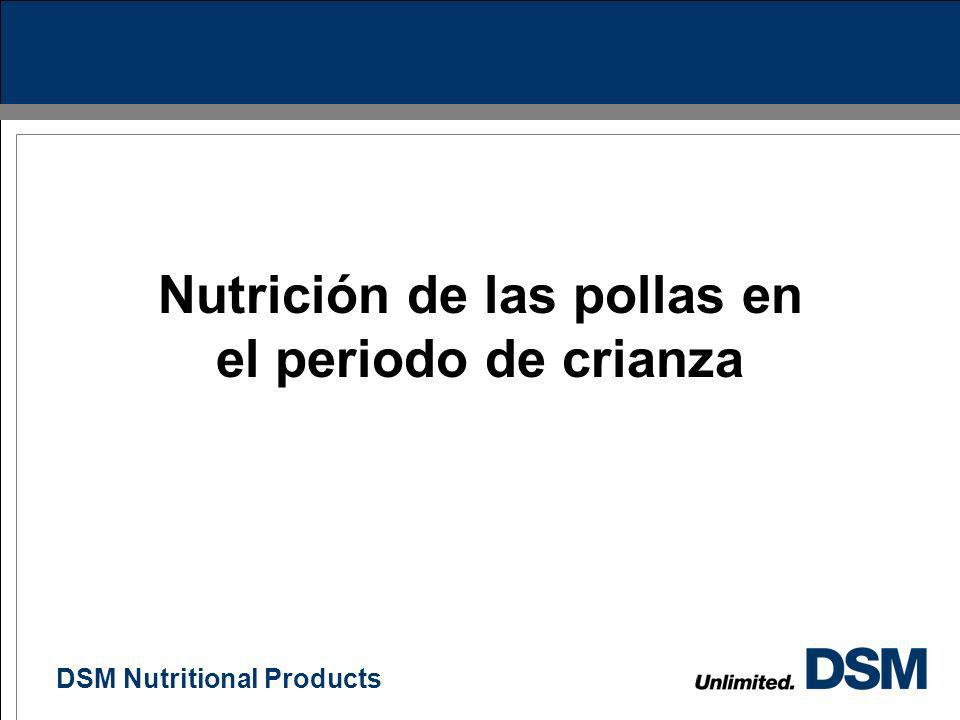 DSM Nutritional Products 6