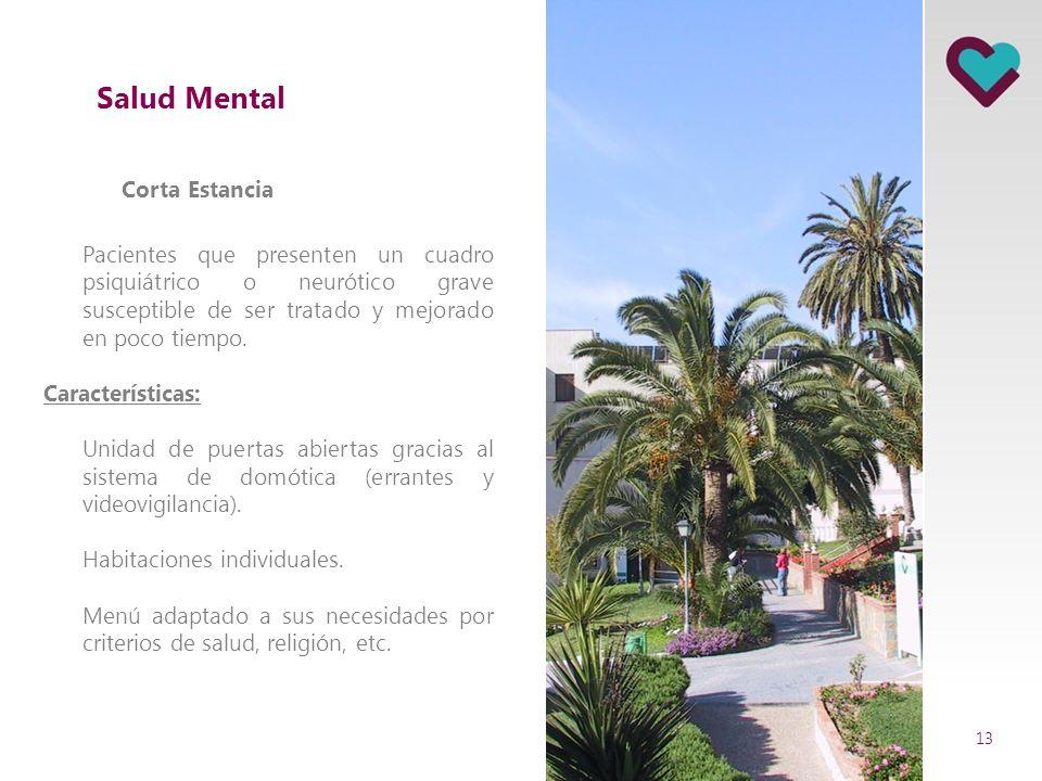 Áreas de actividad SANITARIA: Salud Mental Unidad de Corta estancia 23 camas Unidad de media y larga estancia 105 camas SOCIO SANITARIA RESIDENCIAL: P