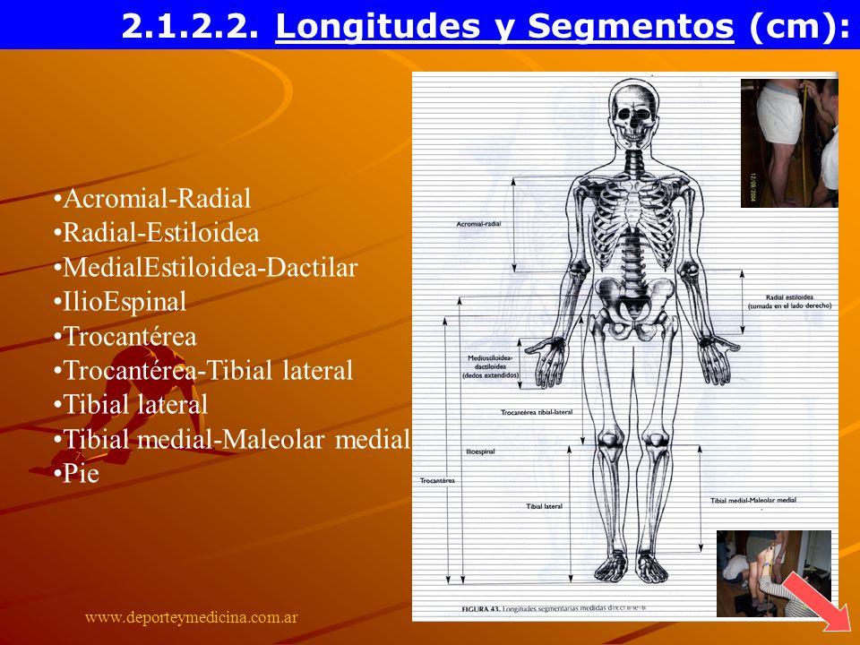 www.deporteymedicina.com.ar Acromial-Radial Radial-Estiloidea MedialEstiloidea-Dactilar IlioEspinal Trocantérea Trocantérea-Tibial lateral Tibial late