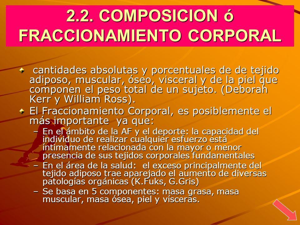 2.2. COMPOSICION ó FRACCIONAMIENTO CORPORAL cantidades absolutas y porcentuales de de tejido adiposo, muscular, óseo, visceral y de la piel que compon