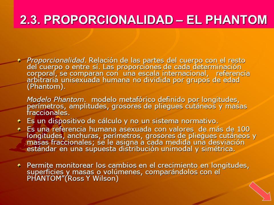 2.3. PROPORCIONALIDAD – EL PHANTOM Proporcionalidad. Relación de las partes del cuerpo con el resto del cuerpo o entre sí. Las proporciones de cada de