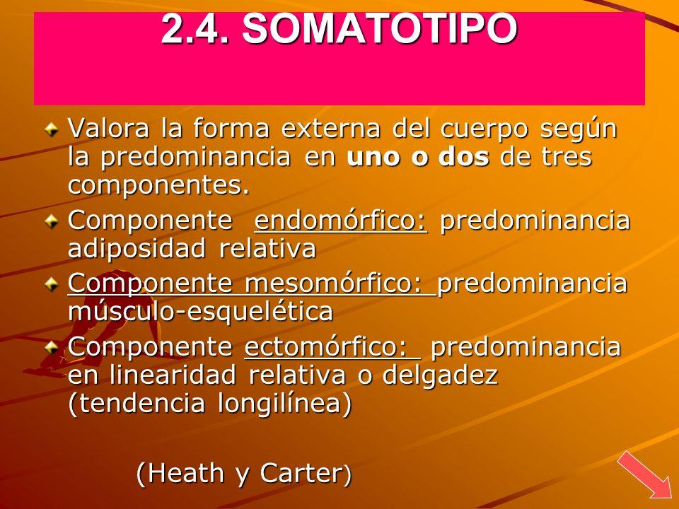 2.4. SOMATOTIPO Valora la forma externa del cuerpo según la predominancia en uno o dos de tres componentes. Componente endomórfico: predominancia adip