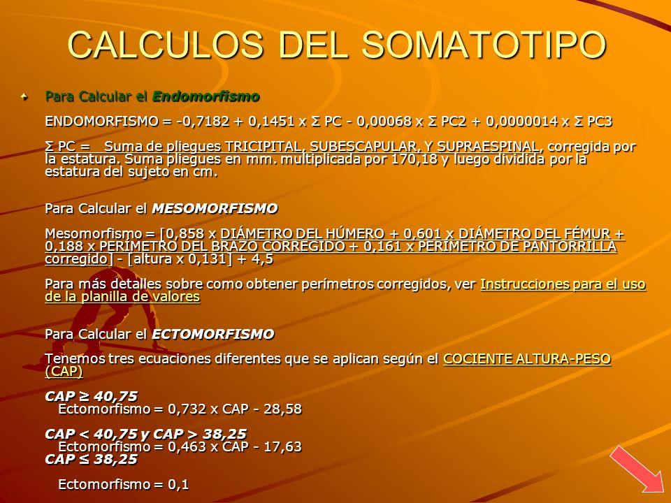 CALCULOS DEL SOMATOTIPO Para Calcular el Endomorfismo ENDOMORFISMO = -0,7182 + 0,1451 x Σ PC - 0,00068 x Σ PC2 + 0,0000014 x Σ PC3 Σ PC = Suma de plie