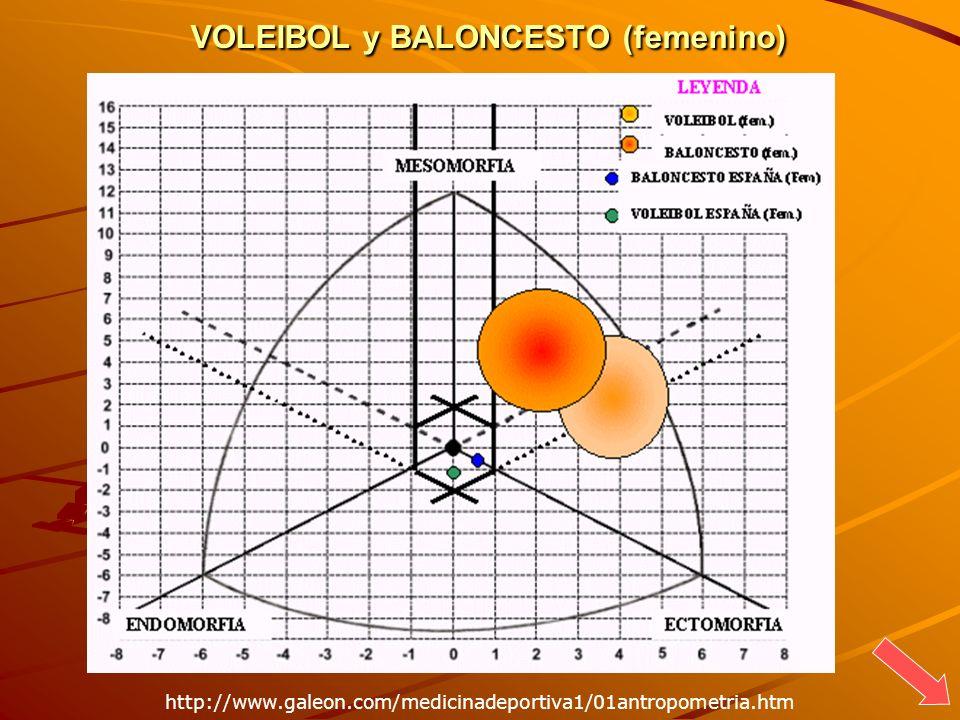 VOLEIBOL y BALONCESTO (femenino) http://www.galeon.com/medicinadeportiva1/01antropometria.htm