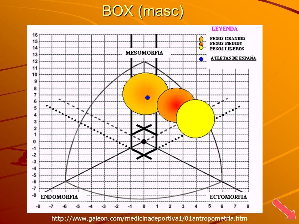 BOX (masc) http://www.galeon.com/medicinadeportiva1/01antropometria.htm