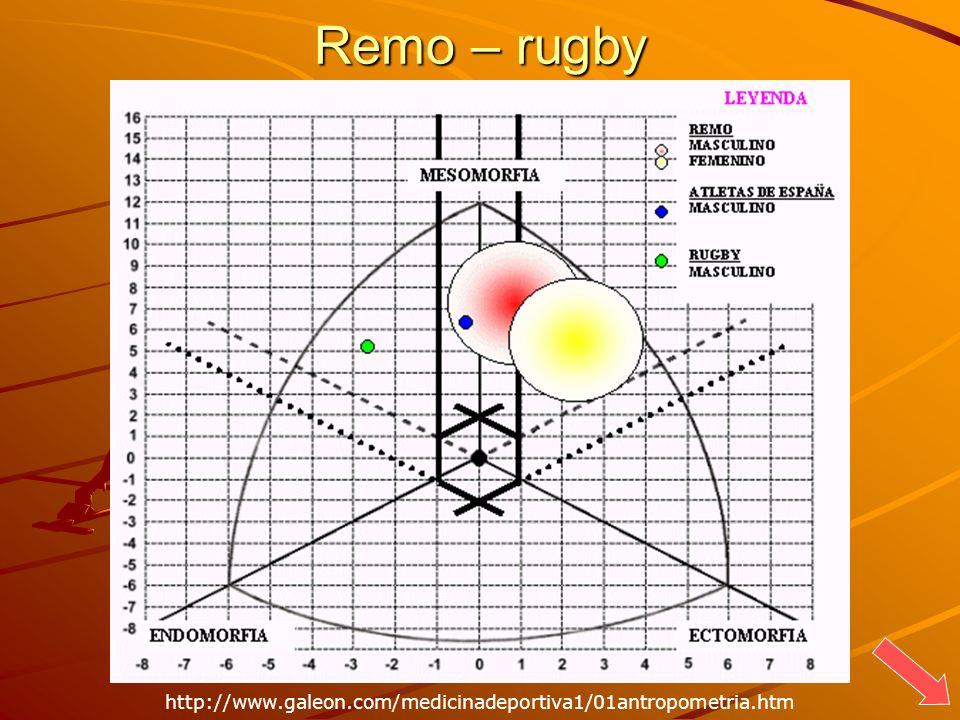 Remo – rugby http://www.galeon.com/medicinadeportiva1/01antropometria.htm