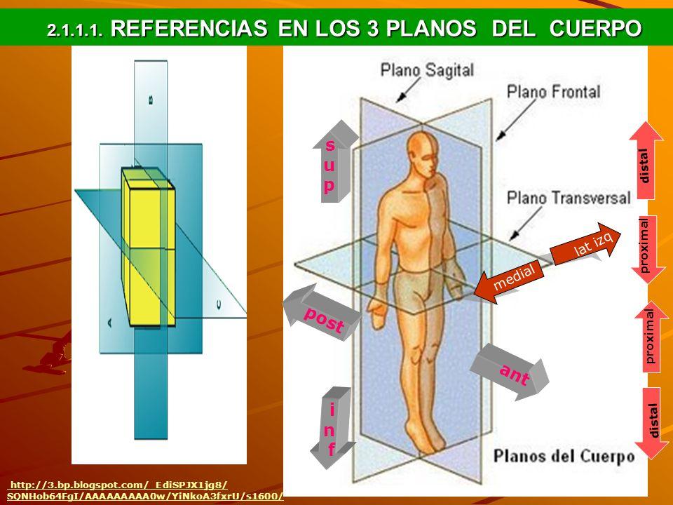 2.1.1.1. REFERENCIAS EN LOS 3 PLANOS DEL CUERPO http://3.bp.blogspot.com/_EdiSPJX1jg8/ SQNHob64FgI/AAAAAAAAA0w/YiNkoA3fxrU/s1600/ supsup infinf ant po
