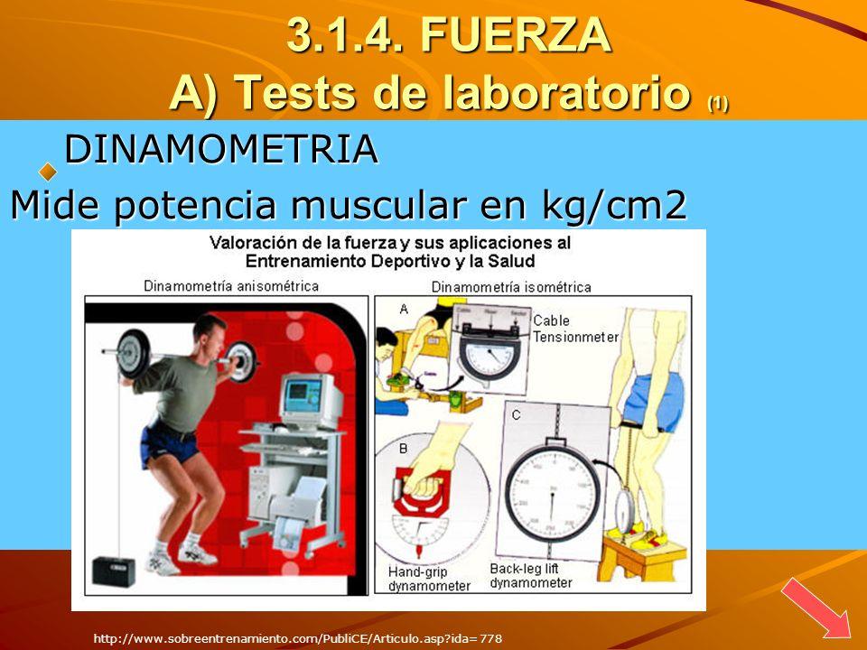 3.1.4. FUERZA A) Tests de laboratorio (1) DINAMOMETRIA DINAMOMETRIA Mide potencia muscular en kg/cm2 http://www.sobreentrenamiento.com/PubliCE/Articul