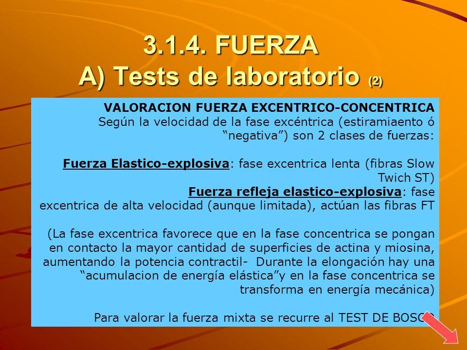 3.1.4. FUERZA A) Tests de laboratorio (2) VALORACION FUERZA EXCENTRICO-CONCENTRICA Según la velocidad de la fase excéntrica (estiramiaento ó negativa)
