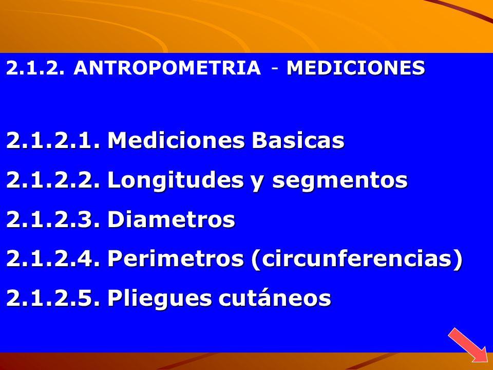 A (anterior) 3 Caras B (superior) C (lateral derecho) 1 (lateral izq.