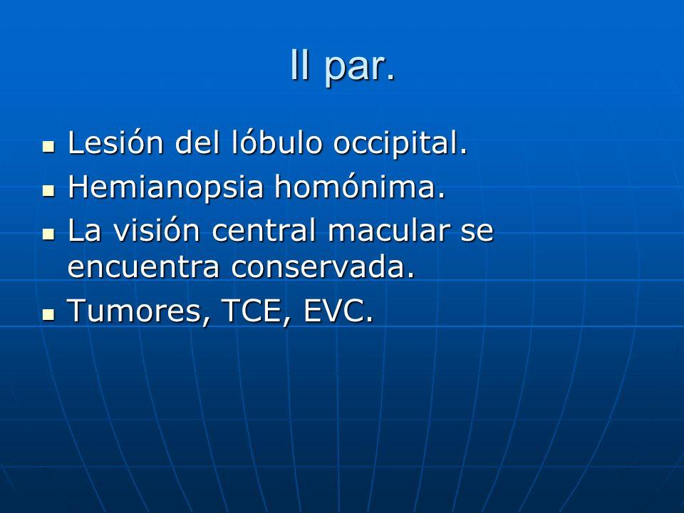 II par. Lesión del lóbulo occipital. Lesión del lóbulo occipital. Hemianopsia homónima. Hemianopsia homónima. La visión central macular se encuentra c