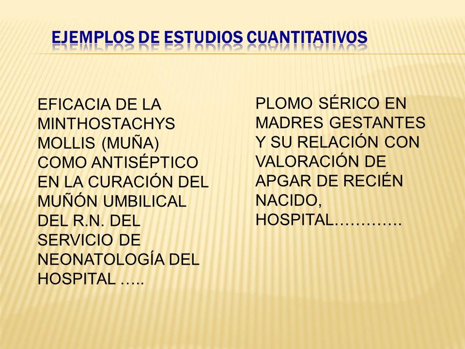 EFICACIA DE LA MINTHOSTACHYS MOLLIS (MUÑA) COMO ANTISÉPTICO EN LA CURACIÓN DEL MUÑÓN UMBILICAL DEL R.N. DEL SERVICIO DE NEONATOLOGÍA DEL HOSPITAL …..