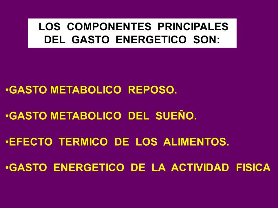 LOS COMPONENTES PRINCIPALES DEL GASTO ENERGETICO SON: GASTO METABOLICO REPOSO. GASTO METABOLICO DEL SUEÑO. EFECTO TERMICO DE LOS ALIMENTOS. GASTO ENER