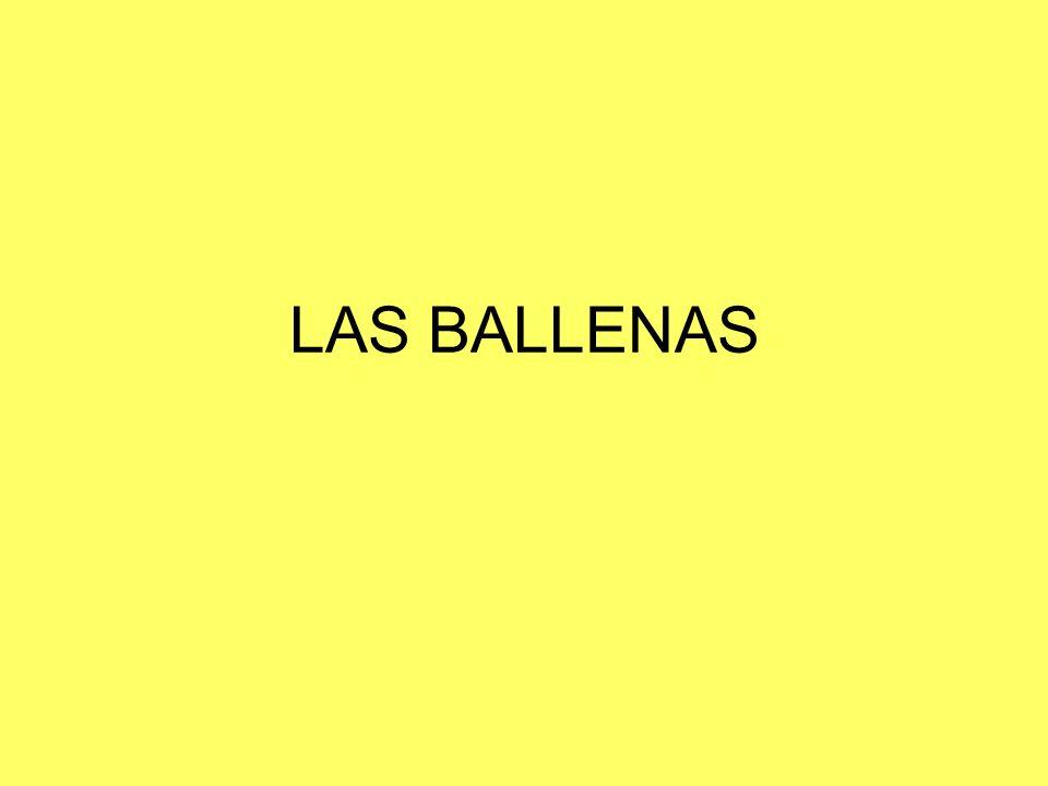 LAS BALLENAS
