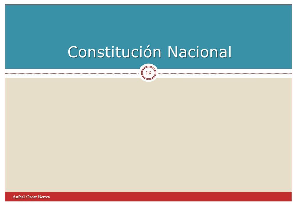 Constitución Nacional Aníbal Oscar Bertea 19