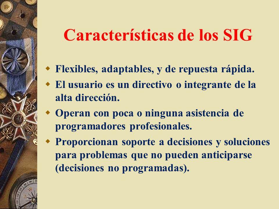 Características de los SIG Flexibles, adaptables, y de repuesta rápida. El usuario es un directivo o integrante de la alta dirección. Operan con poca