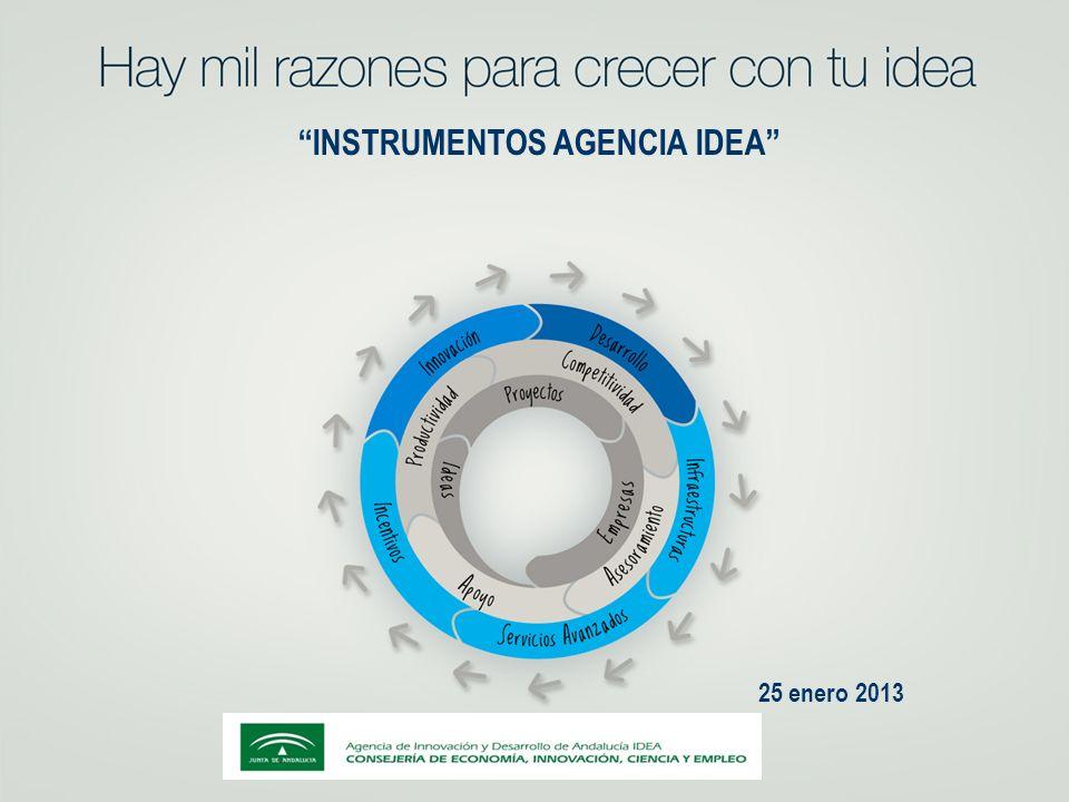 INSTRUMENTOS AGENCIA IDEA 25 enero 2013