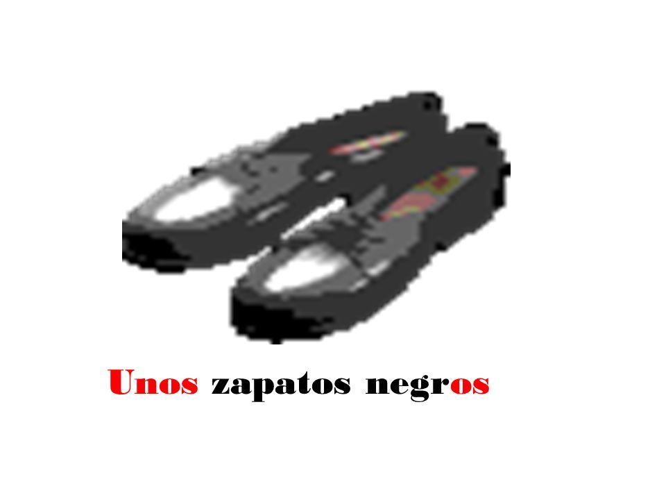 Unos zapatos negros