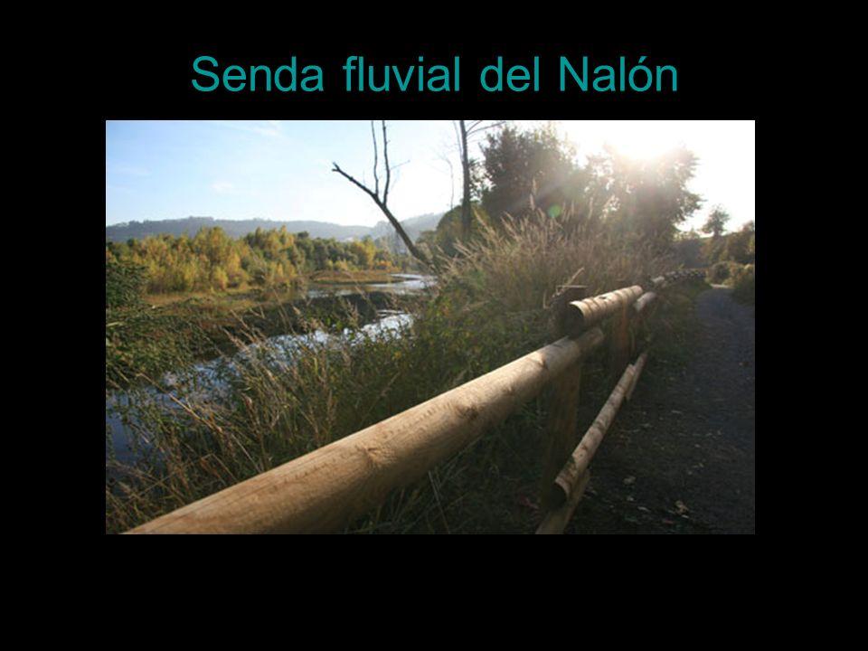 Senda fluvial del Nalón
