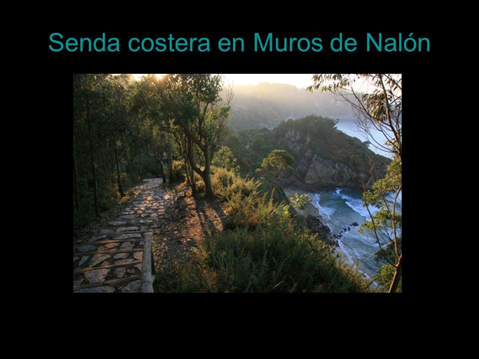 Senda costera en Muros de Nalón