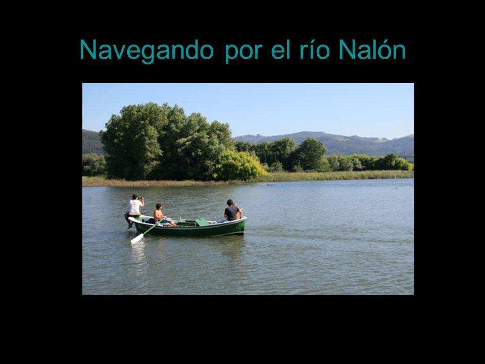 Navegando por el río Nalón