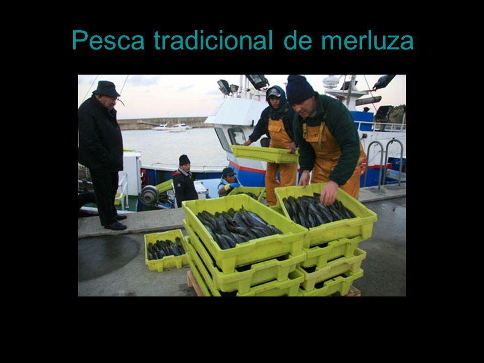 Pesca tradicional de merluza