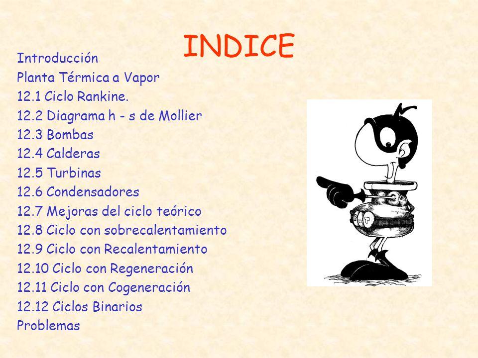 INDICE Introducción Planta Térmica a Vapor 12.1 Ciclo Rankine. 12.2 Diagrama h - s de Mollier 12.3 Bombas 12.4 Calderas 12.5 Turbinas 12.6 Condensador