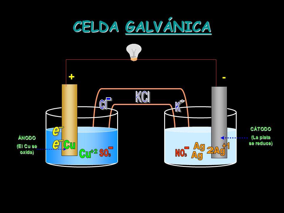 CELDA GALVÁNICA GALVÁNICA ÁNODO (El Cu se oxida) -+CÁTODO (La plata se reduce)