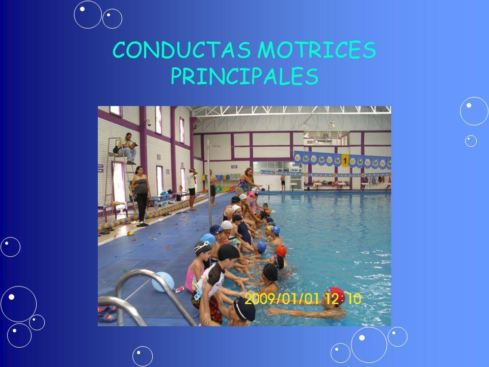 CONDUCTAS MOTRICES PRINCIPALES