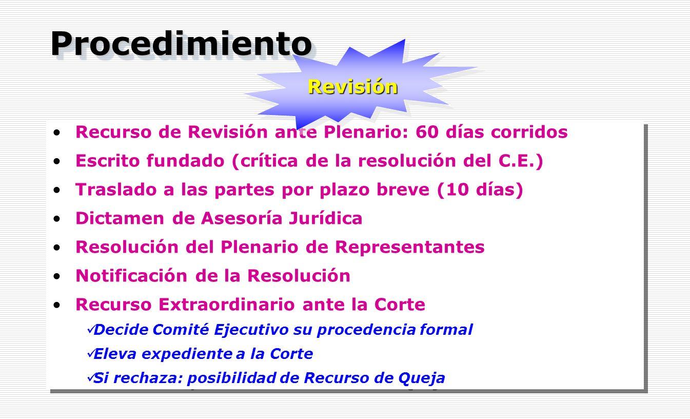Recurso de Revisión ante Plenario: 60 días corridos Escrito fundado (crítica de la resolución del C.E.) Traslado a las partes por plazo breve (10 días