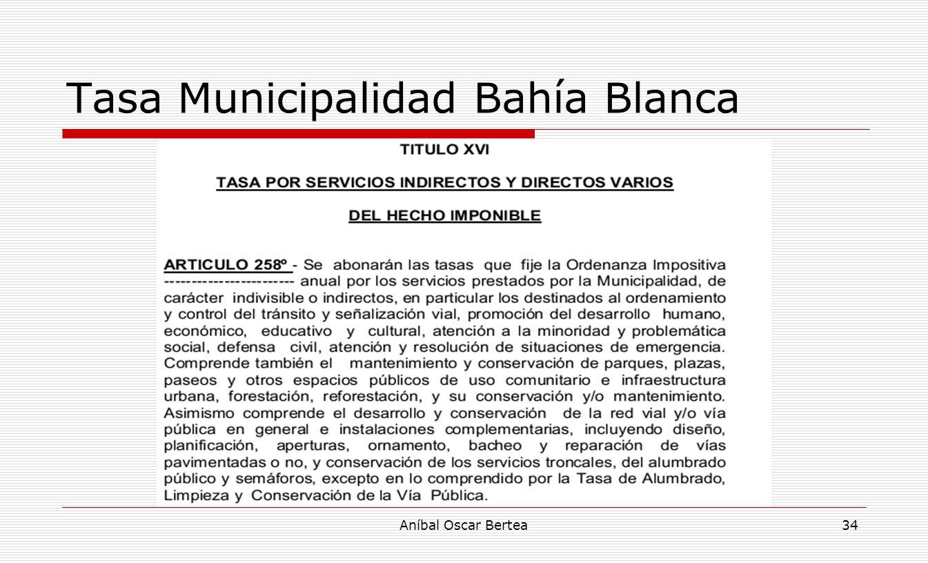 Tasa Municipalidad Bahía Blanca Aníbal Oscar Bertea34