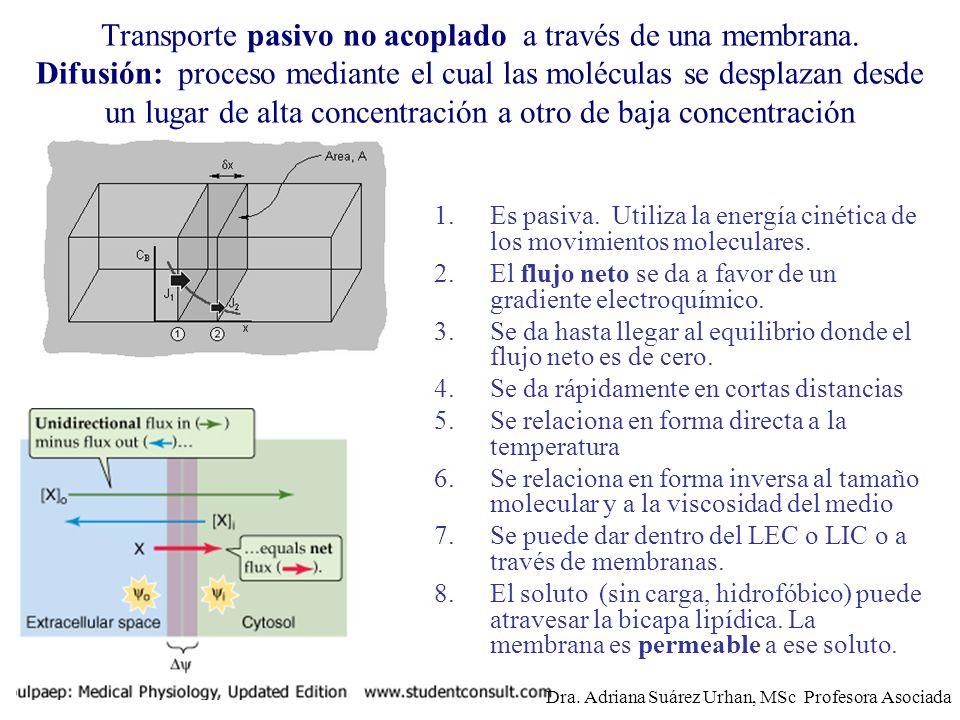 Transporte pasivo no acoplado a través de una membrana. Difusión: proceso mediante el cual las moléculas se desplazan desde un lugar de alta concentra
