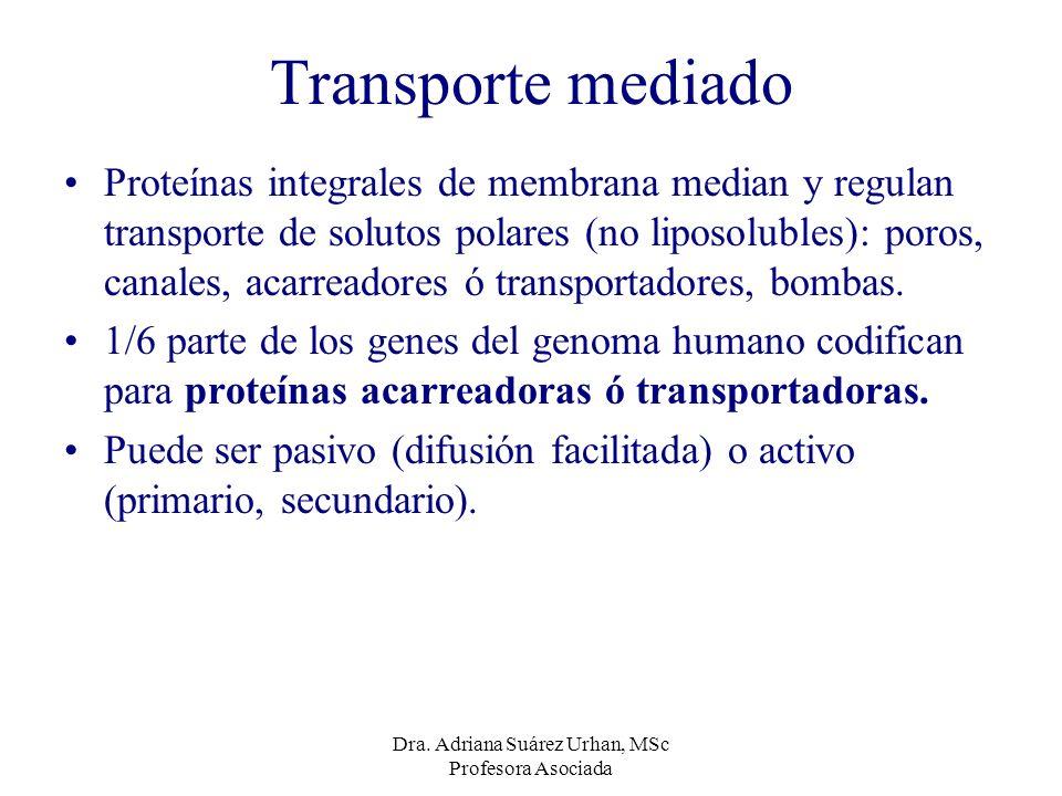 Transporte mediado Proteínas integrales de membrana median y regulan transporte de solutos polares (no liposolubles): poros, canales, acarreadores ó t