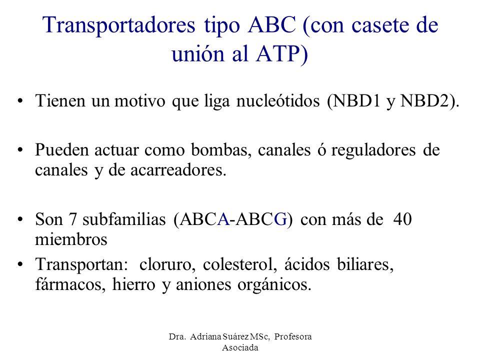 Transportadores tipo ABC (con casete de unión al ATP) Tienen un motivo que liga nucleótidos (NBD1 y NBD2). Pueden actuar como bombas, canales ó regula