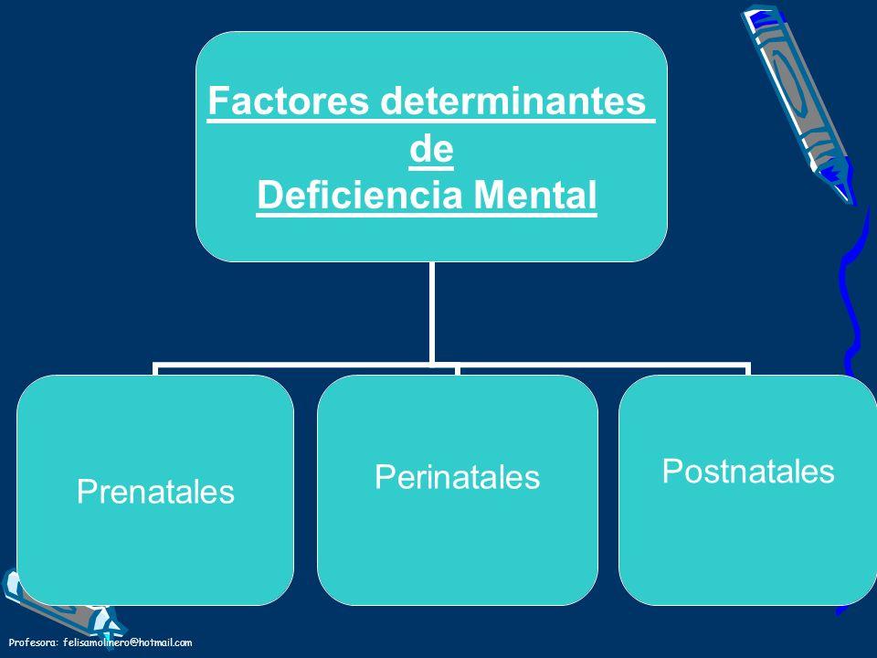 Profesora: felisamolinero@hotmail.com Factores determinantes de Deficiencia Mental Prenatales PerinatalesPostnatales