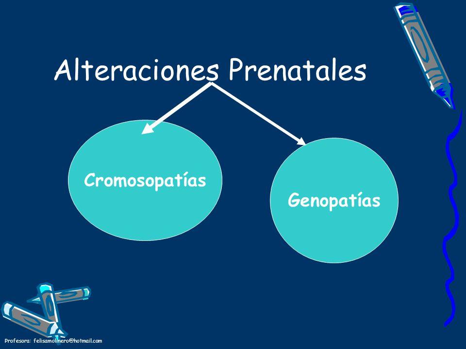 Profesora: felisamolinero@hotmail.com Alteraciones Prenatales Cromosopatías Genopatías