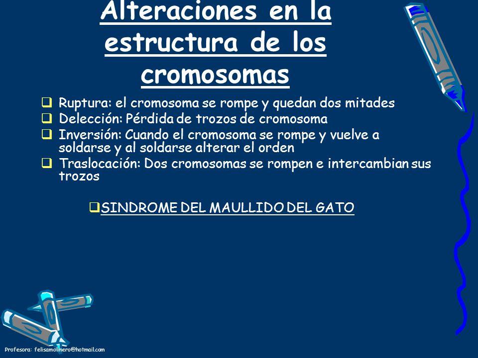 Profesora: felisamolinero@hotmail.com Alteraciones en la estructura de los cromosomas Ruptura: el cromosoma se rompe y quedan dos mitades Delección: P