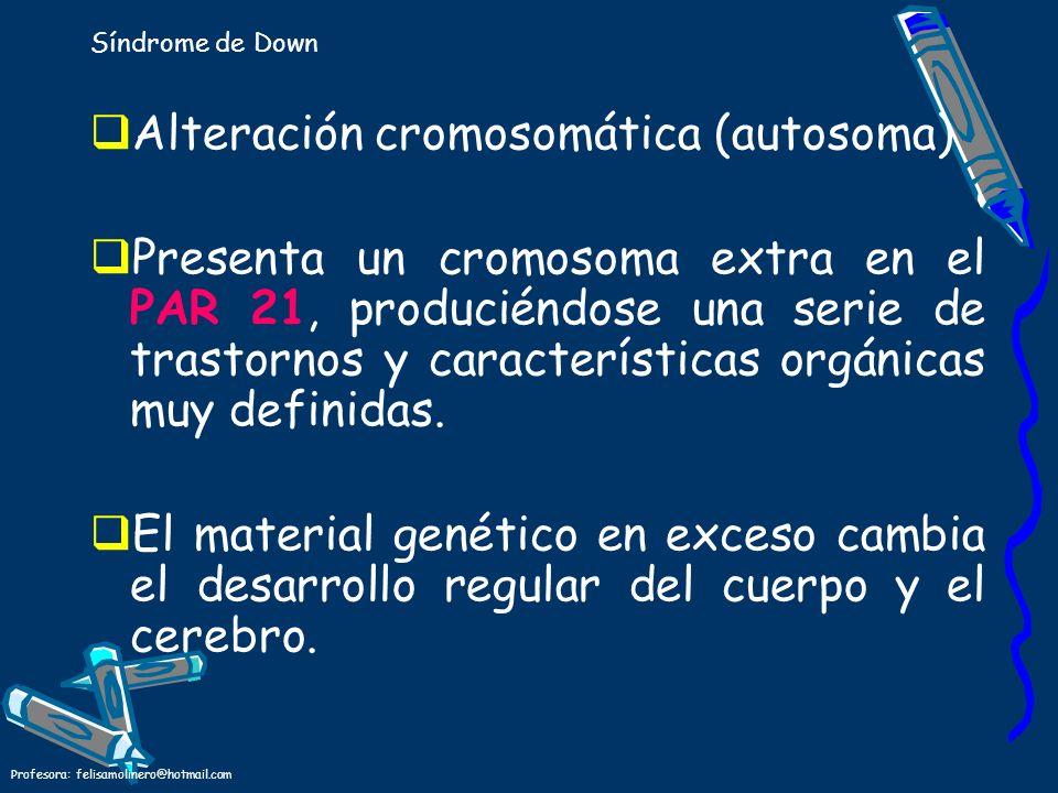 Profesora: felisamolinero@hotmail.com Síndrome de Down Alteración cromosomática (autosoma) Presenta un cromosoma extra en el PAR 21, produciéndose una