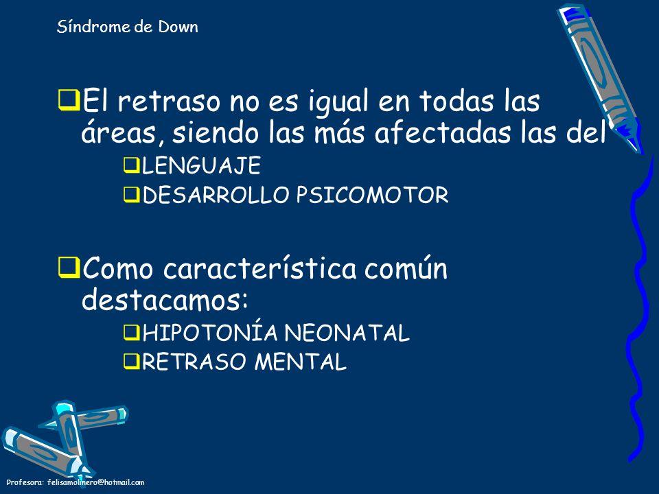 Profesora: felisamolinero@hotmail.com Síndrome de Down El retraso no es igual en todas las áreas, siendo las más afectadas las del LENGUAJE DESARROLLO