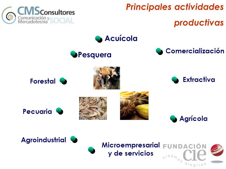 Principales actividades productivas Acuícola Agrícola Agroindustrial Comercialización Extractiva Forestal Pecuaria Microempresarial y de servicios Pes