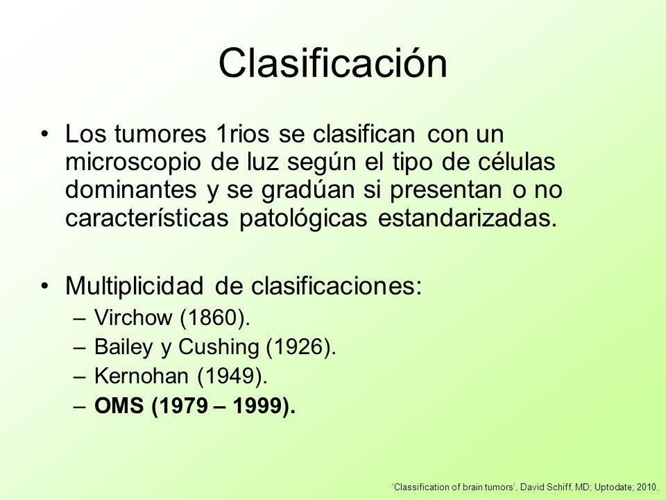Clasificación Los tumores 1rios se clasifican con un microscopio de luz según el tipo de células dominantes y se gradúan si presentan o no característ