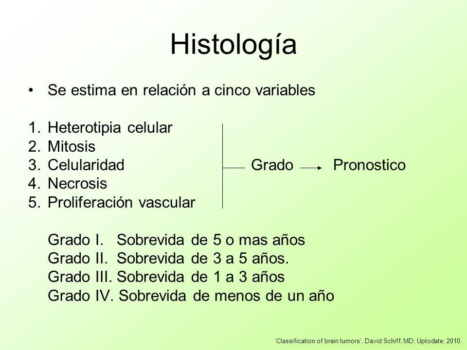 Se estima en relación a cinco variables 1.Heterotipia celular 2.Mitosis 3.Celularidad Grado Pronostico 4.Necrosis 5.Proliferación vascular Grado I. So