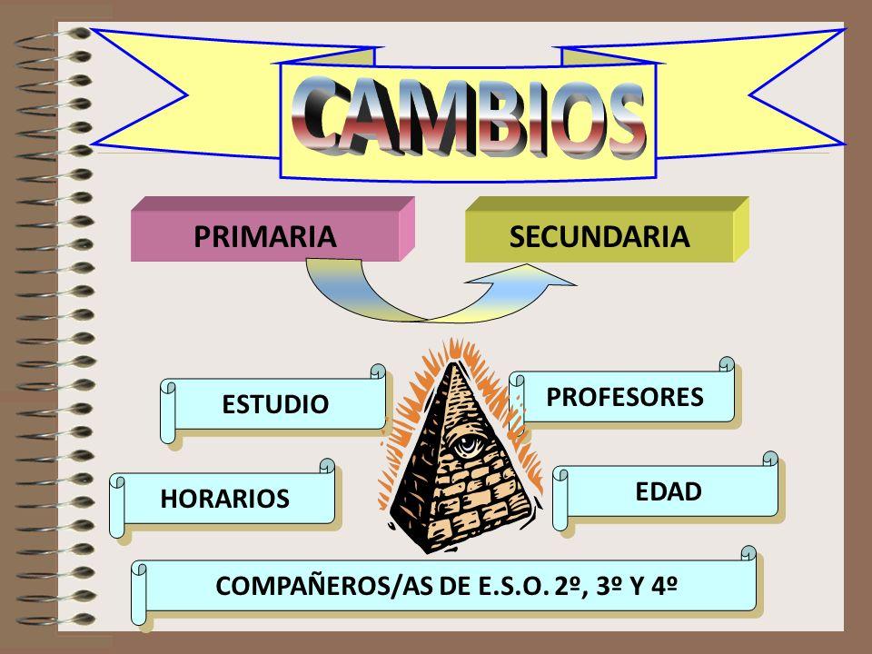CAMBIOS PRIMARIASECUNDARIA ESTUDIO ESTUDIO COMPAÑEROS/AS DE E.S.O. 2º, 3º Y 4º COMPAÑEROS/AS DE E.S.O. 2º, 3º Y 4º HORARIOS HORARIOS EDAD EDAD PROFESO