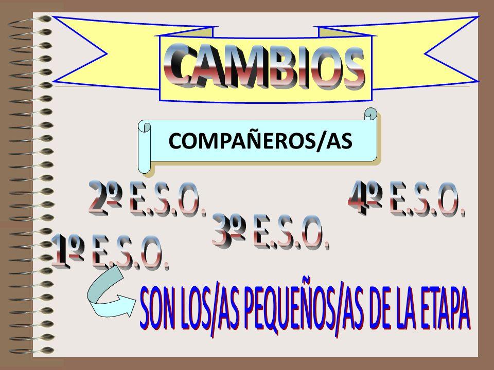 CAMBIOS compañeras COMPAÑEROS/AS