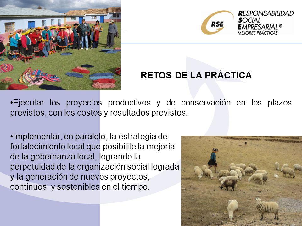 RETOS DE LA PRÁCTICA Ejecutar los proyectos productivos y de conservación en los plazos previstos, con los costos y resultados previstos. Implementar,