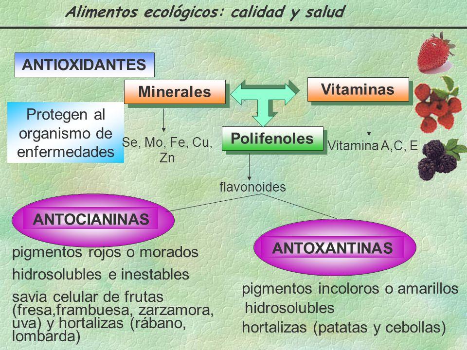 Según la cantidad en que están presentes, se distinguen entre macronutrientes que ocupan la mayor proporción de los alimentos y los micronutrientes, q