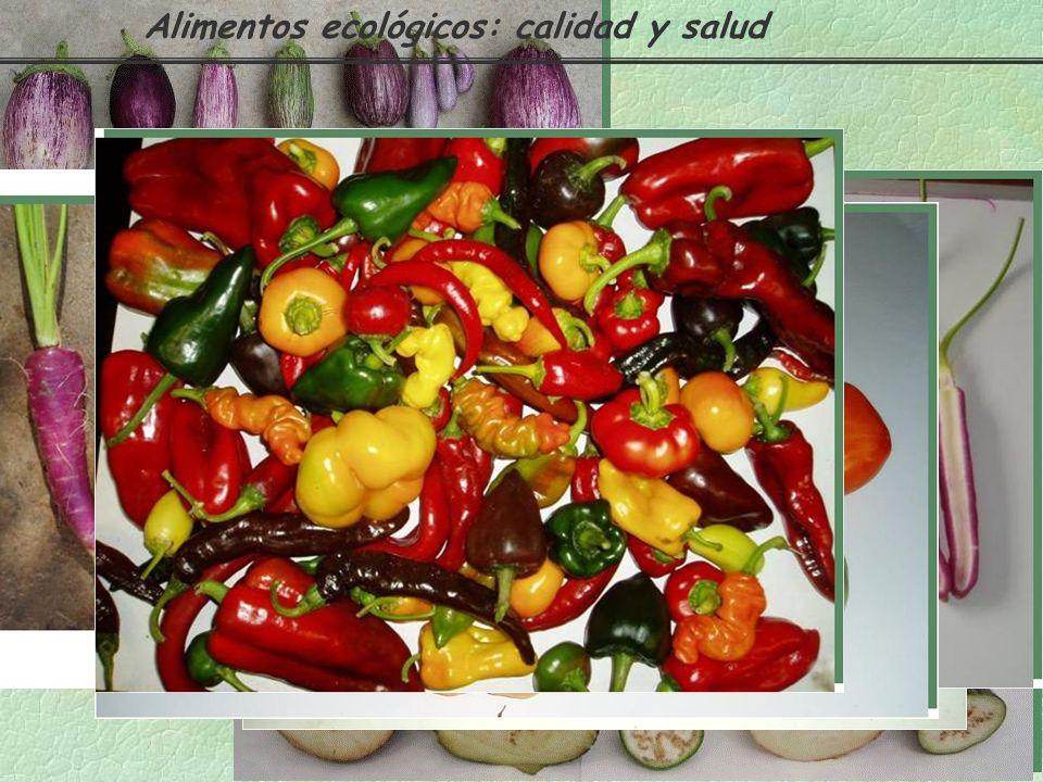 Protegen al organismo de enfermedades ANTOXANTINAS ANTOCIANINAS pigmentos rojos o morados hidrosolubles e inestables savia celular de frutas (fresa,fr